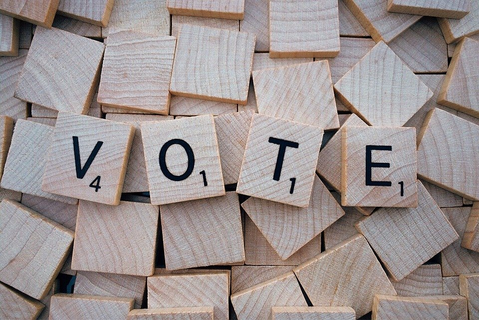 Special Voting