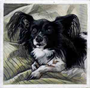 painting of a black and white papillon dog sitting on a yellow and gray striped blanket
