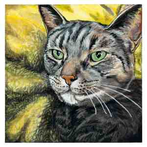 painting of a brown tabby cat resting on a yellow pillow
