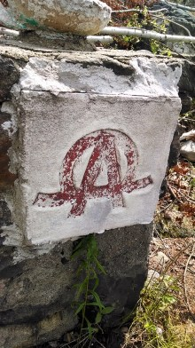 I have no idea what this is, but it was on a few structures. I like to think of it as a hidden superhero symbol.