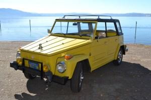 VW Thing, 181