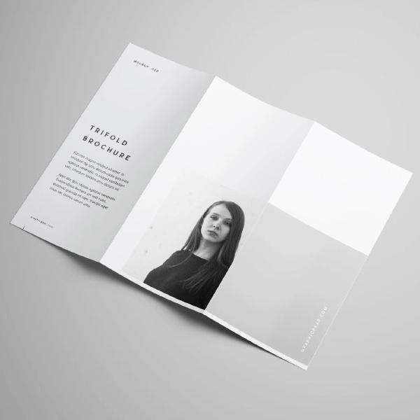 tri fold leaflet