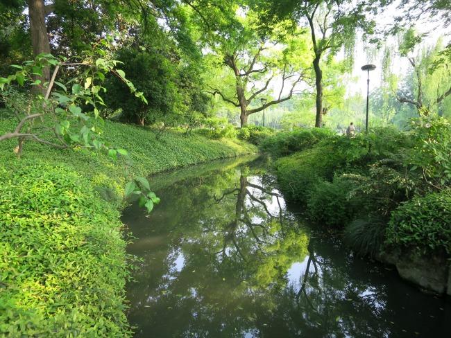 Hangzhou greenery  Mint Mocha Musings