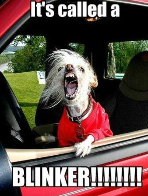 School Run Blinker