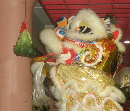 Spring Festival China