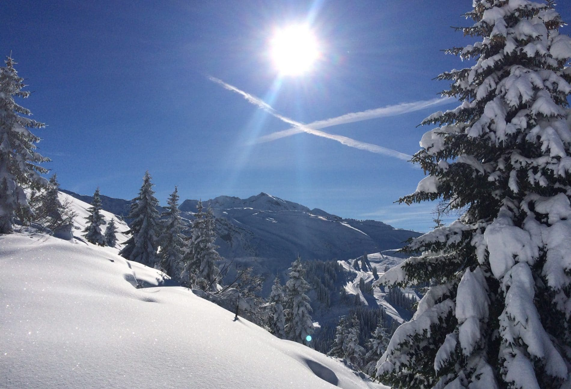 <div>CORONAVIRUS FAQs & YOUR SNOWBOARD / SKI HOLIDAY</div>