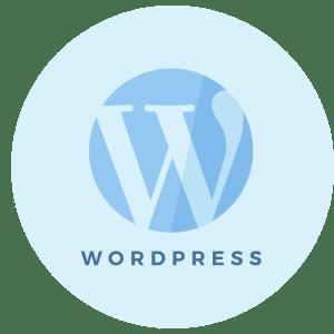 Step 9 - WordPress Setup - Brand & Website Design Package Process - MintSwift