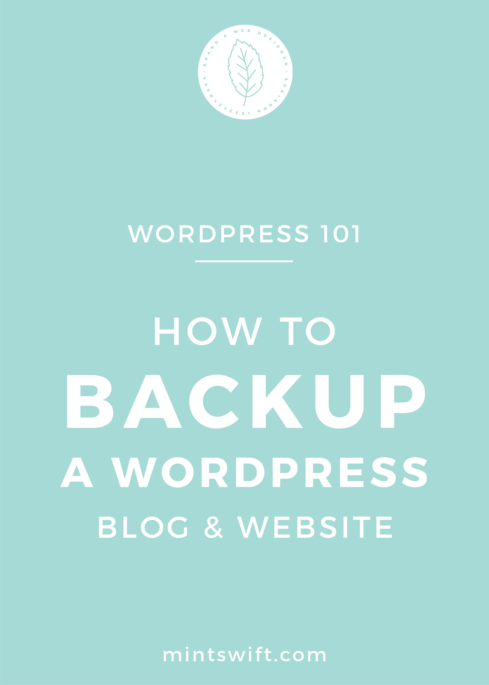 How to Backup a WordPress Blog & Website - MintSwift