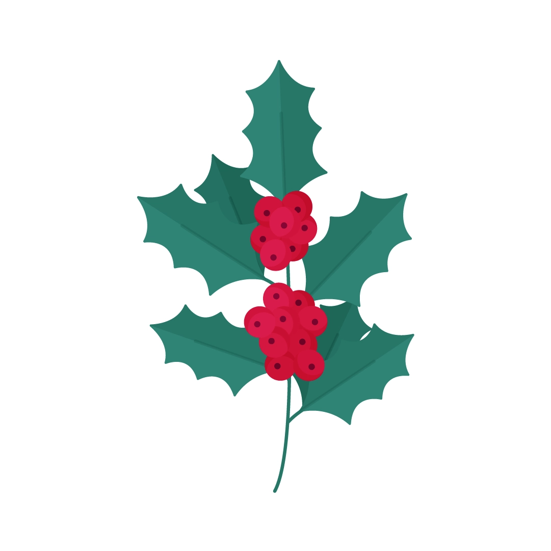 Vector illustration of a branch of Holly in flat design style