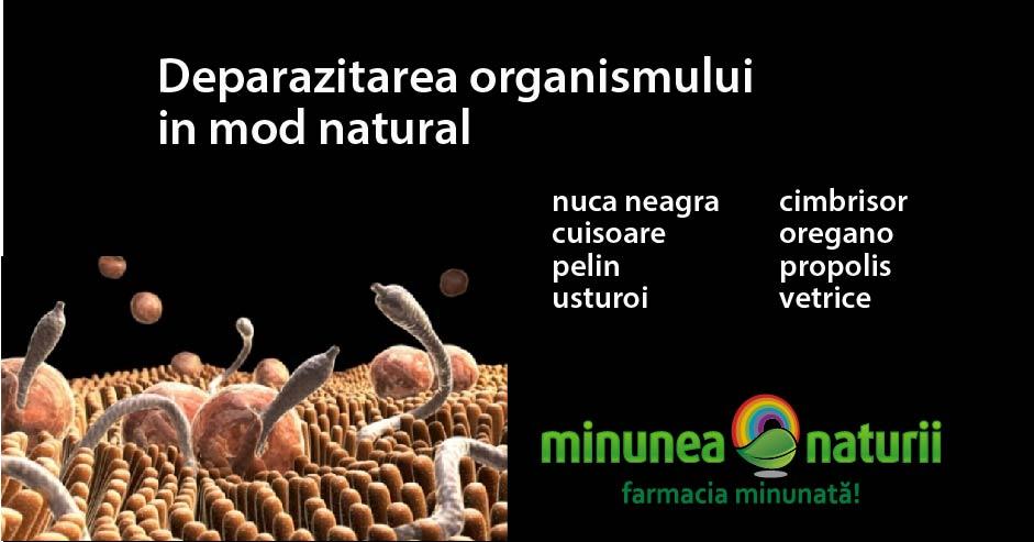 plante deparazitare
