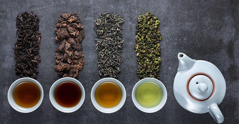 Diferenta dintre ceaiurile alb, verde, oolong si negru