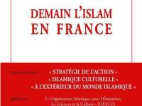 « DEMAIN, L'ISLAM EN FRANCE »(Bernard Chupin)