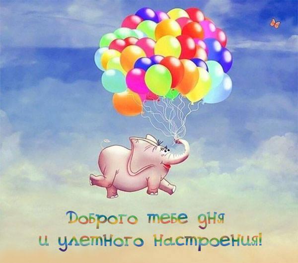 Доброго дня и хорошего настроения - красивые и прикольные ...