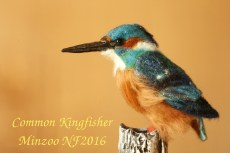Kingfisher bird sculpture