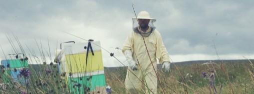 Scotland honey local beekeeper Edinburgh