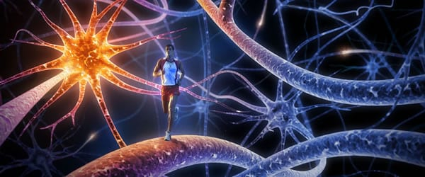 6 Major Prescribed and Off-Label Uses of Modafinil