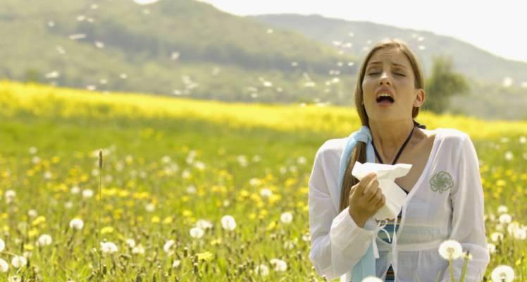 Five Greatest Australian Hay Fever Culprits