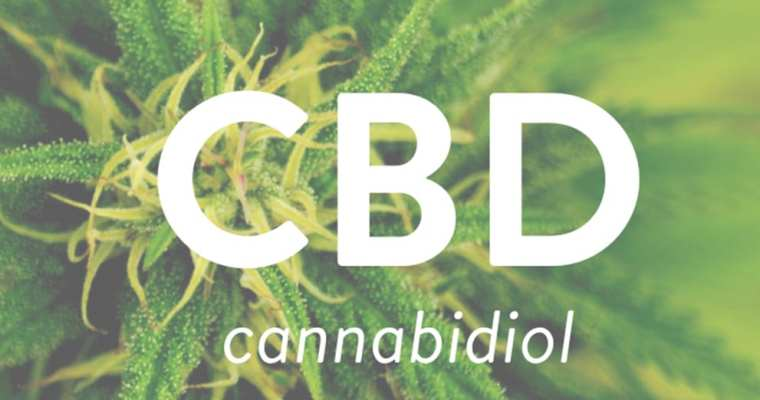 Is CBD Oil Really Good For Your Health