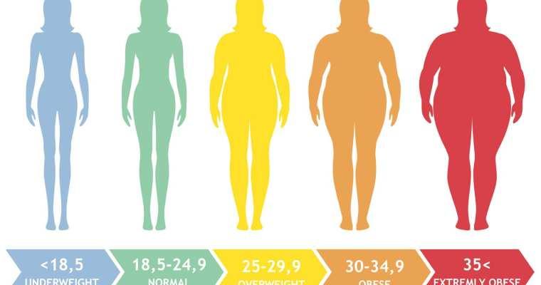 Weight Loss Tools – BMI