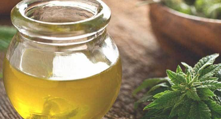 The Proven Health Benefits of CBD Oil