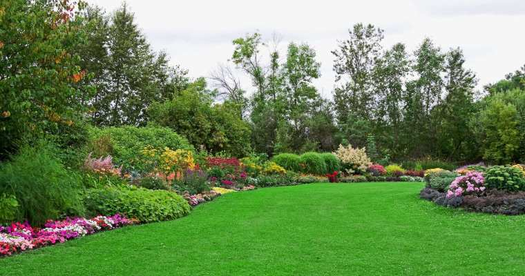 How Your Garden Affects Your Health