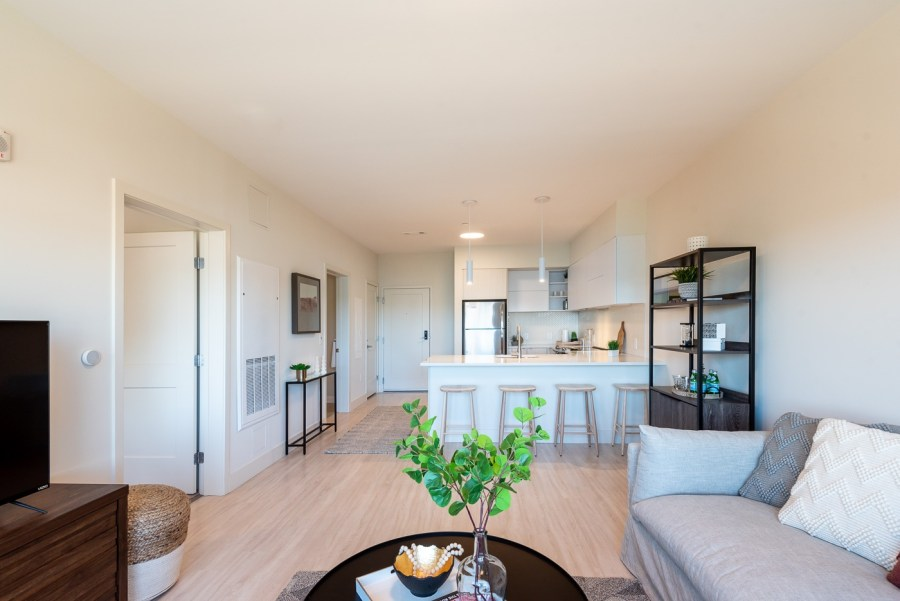 one bedroom apartment with large open kitchen breakfast bar and common area