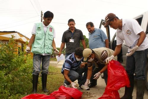 Minambiente define acciones para manejo y control de caracol africano
