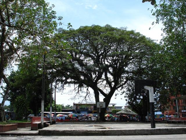 Aprobado proyecto de ley que beneficia a Puerto Asís
