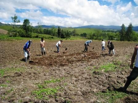 Los integrantes de la unidad productiva Granja Unidad Mental, toman las herramientas pertinentes y empiezan a arar la tierra