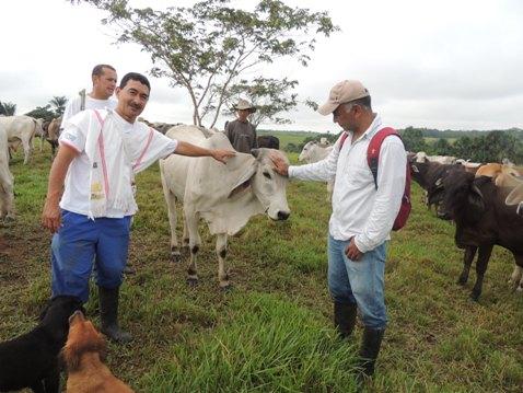 Los principales beneficiados del proyecto serán los ganaderos del municipio, quienes recibieron con beneplácito la propuesta del pastoreo racional