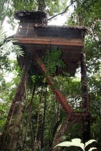 CAG TURISMO AMAZONAS 9