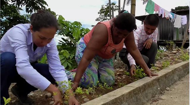 Jornada de ornato y embellecimiento en Puerto Colón (San Miguel – Putumayo)