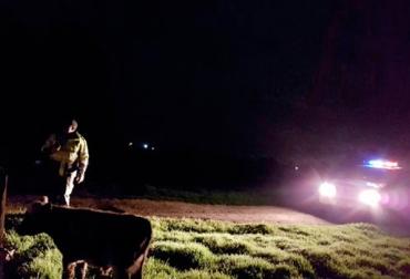 Sector ganadero solicita más operativos en horas de la madrugada