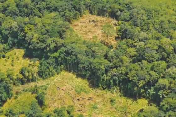 La incertidumbre del medioambiente en el posconflicto