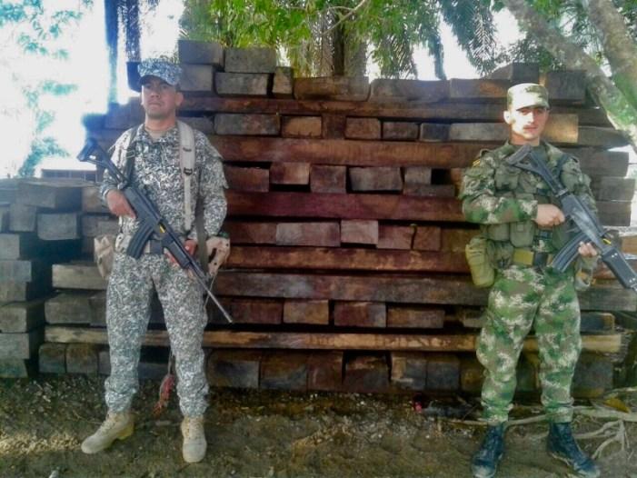 Ejército incautó 15 metros cúbicos de madera en Putumayo