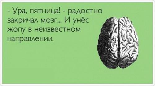 приколы про мозги