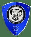 SPYDOG.KZ - Видео-наблюдение и охрана Ваша дома