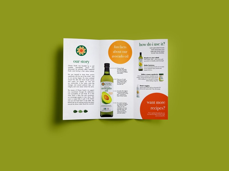 brochure ideas for school project   Akba katadhin co brochure