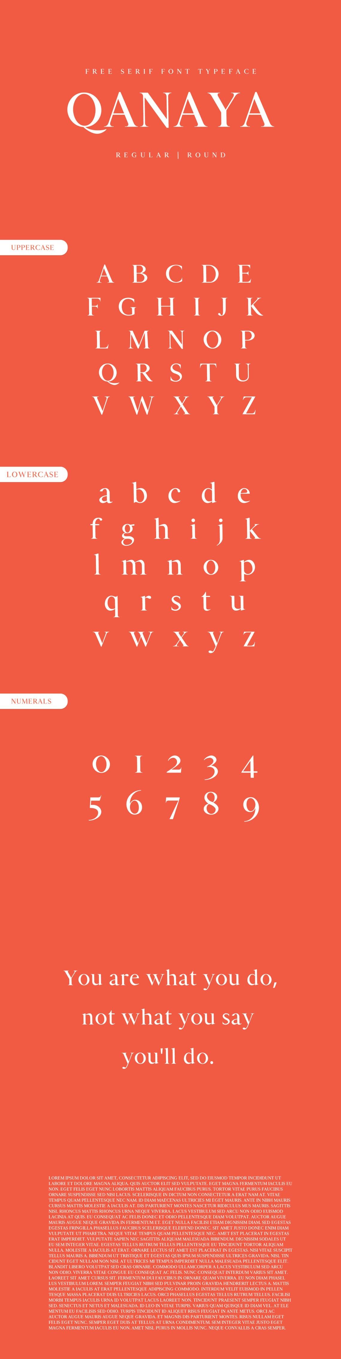 Download Free Qanaya Serif Font Family Pack on Behance