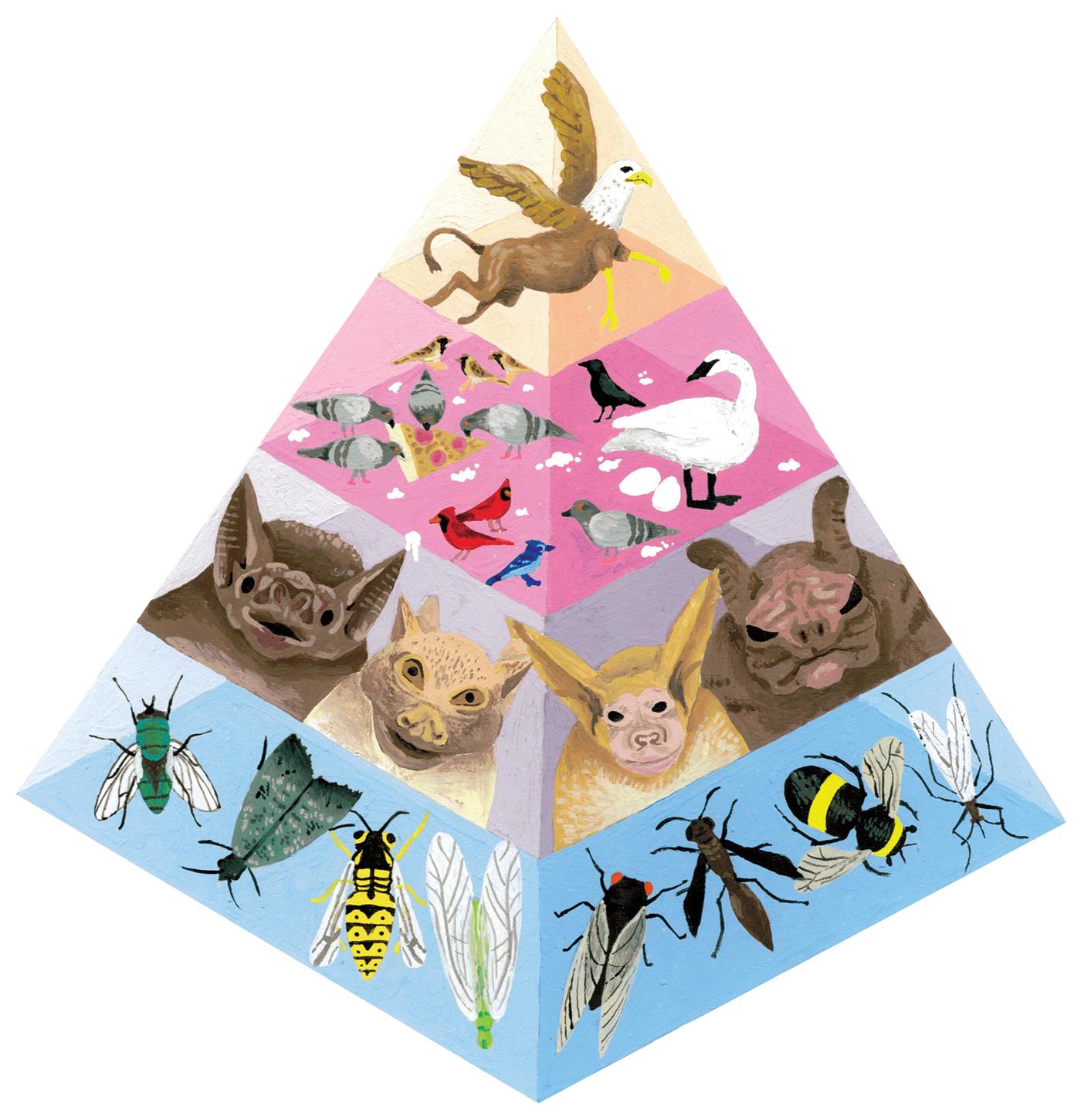 Adult Swim Food Chain Pyramids Pattern On Behance