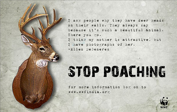 Poster do filme Poachers