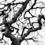 Japanese Maple Tree 1 On Behance