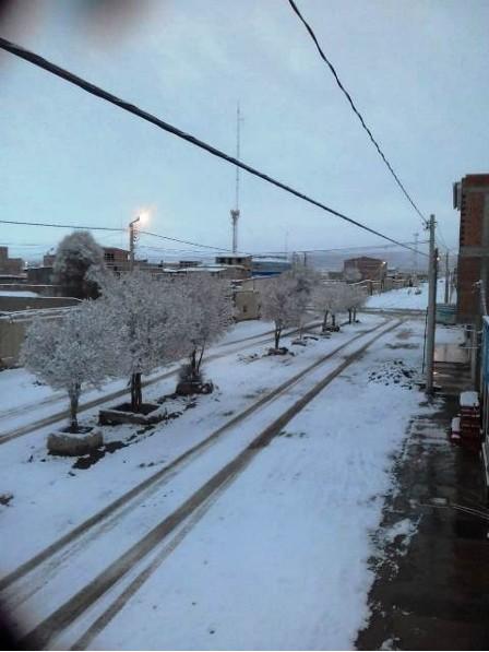 160 unidades educativas de Potosí suspendieron labores por intensa nevada