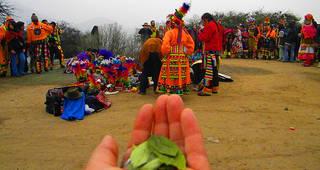 II Taller Internacional de Conocimiento Indígena en América Latina