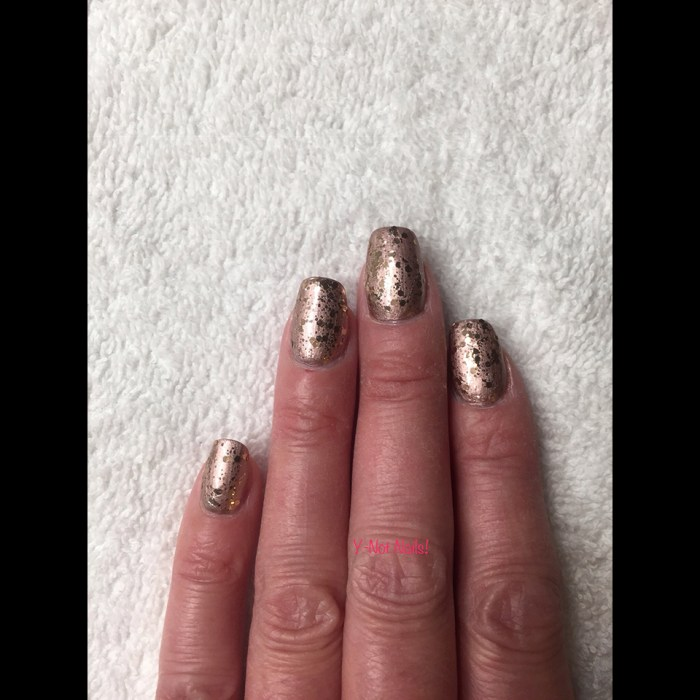 Y-Not-Nails-5a