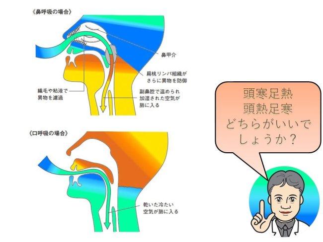 鼻呼吸説明