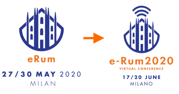 Afterthoughts of e-Rum2020 in The R Journal