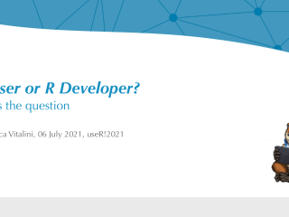 R User or R Developer? This is the question