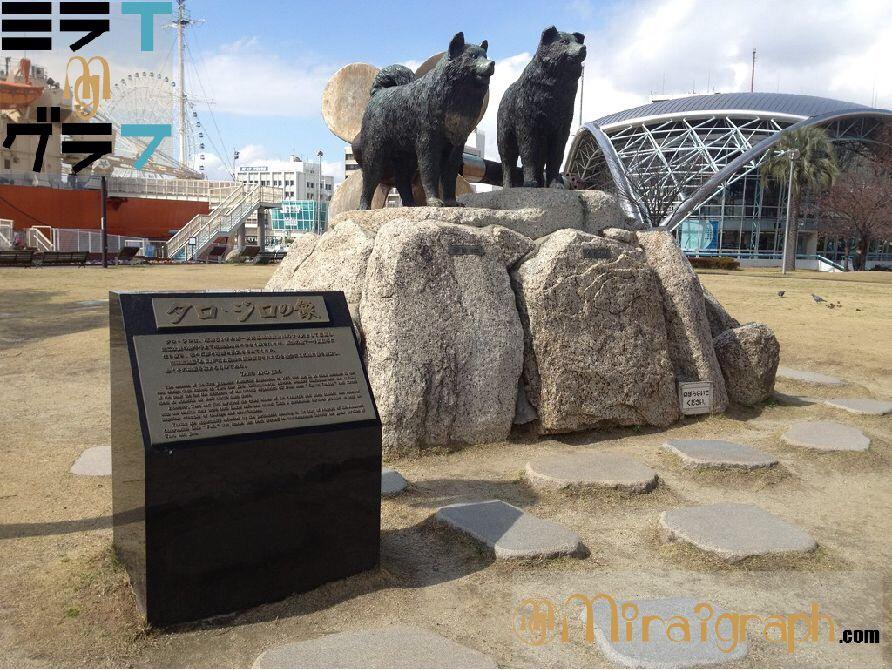 奇跡の生還!!南極観測隊タロとジロの物語 1月14日は愛と希望と勇気の日