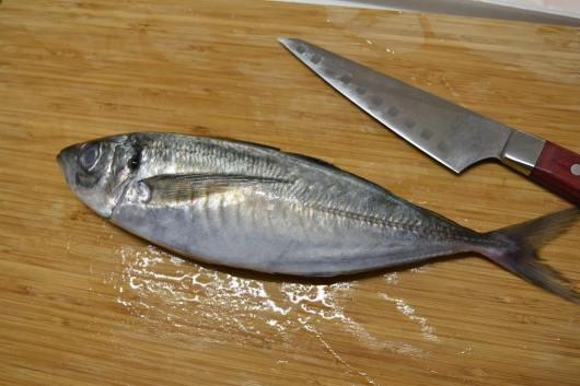 みらいママ講座 魚のさばき方 北千住 足立区 西新井 アジのさばき方